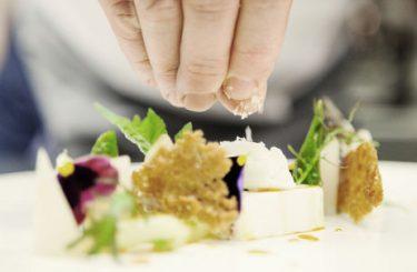 Gasthof Mangold, Restaurant, Food, kochen, Küche, Michael Schwarzenbacher, Lochau