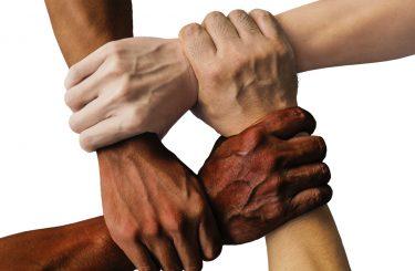 diversity3